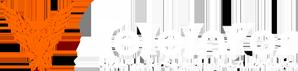 Teleinfor Sistema de Segurança e Telecom Logo